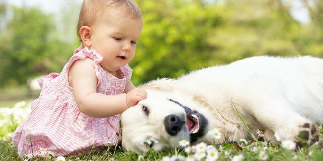 Secondo uno studio i bambini che hanno un animale sono più felici