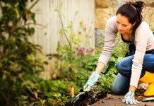 Gli attrezzi per il giardino che non dovrebbero mai mancare
