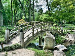 Il giardino Bioarmonico: terra e cielo in armonia